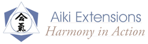 Aiki Extensions